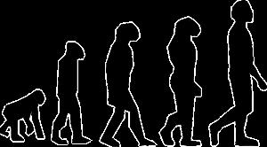 L'evoluzione dell'Intermediario Assicurativo